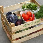 årstiderne vegansk måltidskasse 1